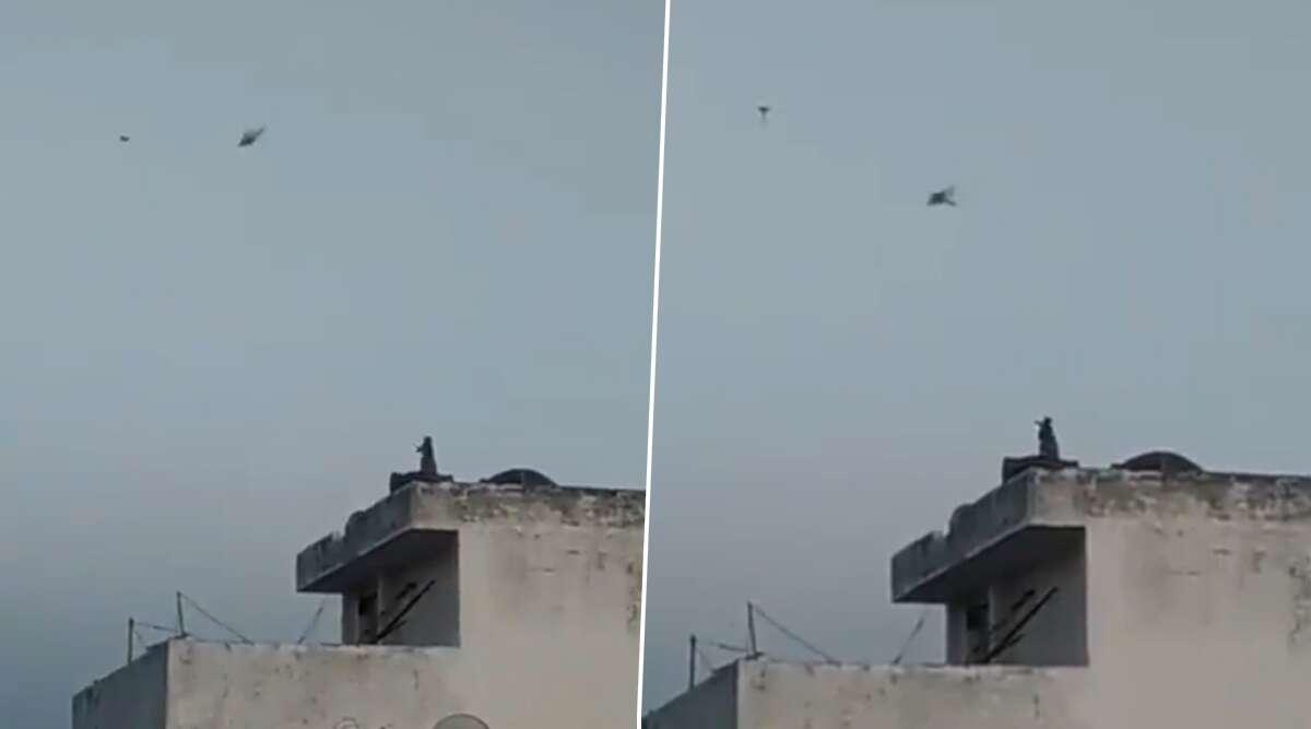 देश में लॉकडाउन के बीच बिल्डिंग की खाली छत पर बंदर ने उड़ाया पतंग, देखें वीडियो