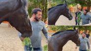 Lockdown: सलमान खान ने फार्महाउस पर अपने घोड़े के साथ किया ब्रेकफास्ट, Video देखकर रह जाएंगे हैरान