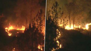 उत्तराखंड के जंगलों में लगी भीषण आग, पांच हेक्टेयर तक के जंगल जलकर खाक