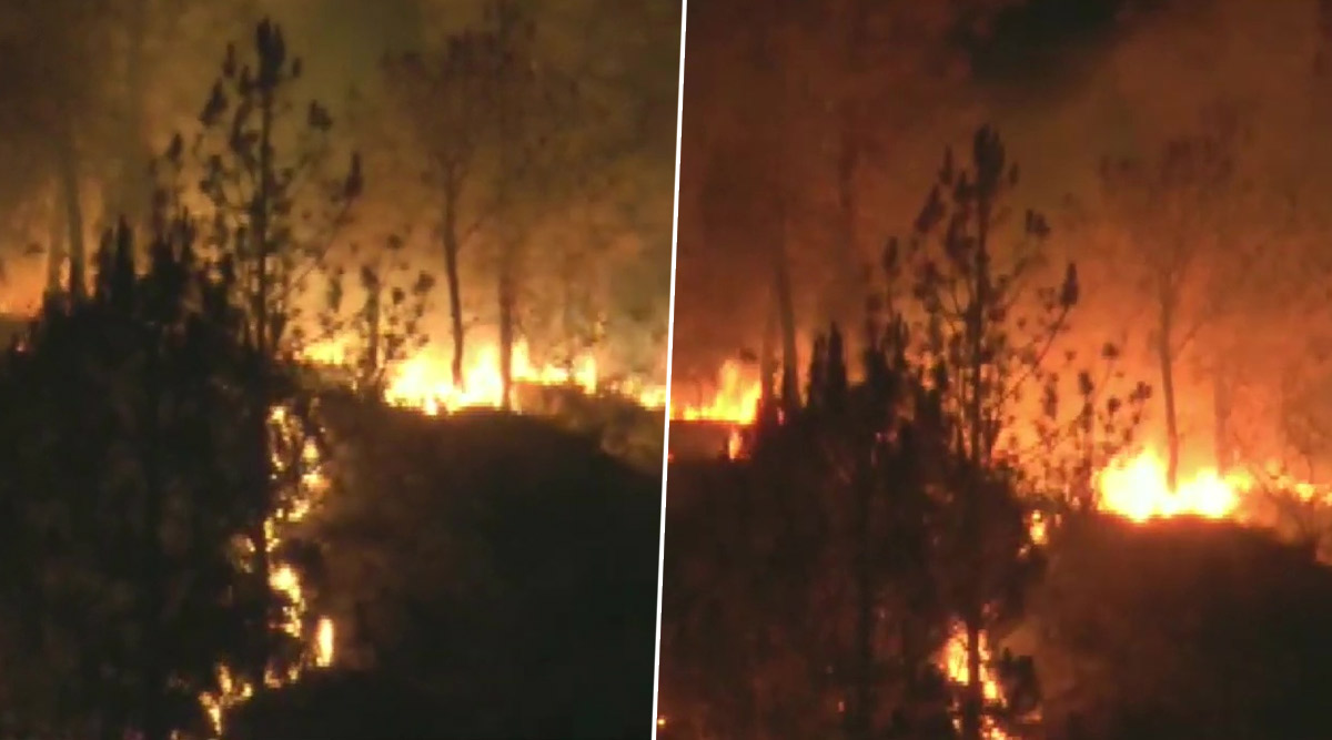 Uttarakhand Forest Fire Update: आग से अब तक 111 हेक्टेयर भूमि प्रभावित, 3 लाख रुपये का हुआ नुकसान
