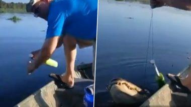 फिशिंग के दौरान मछली की जगह कांटे में फंसा मगरमच्छ, देखते ही शख्स का डर के मारे हुआ बुरा हाल (Watch Viral Video)