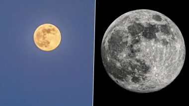 Super Flower Moon 2020 Photos: पूरे विश्व ने देखा साल का आखिरी 'सुपरमून', सोशल मीडिया यूजर्स ने इंटरनेट पर शेयर की खास तस्वीरें