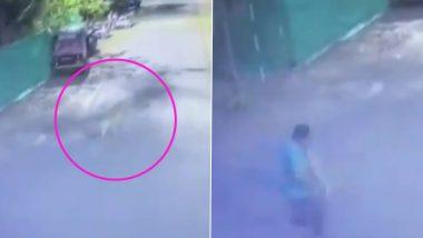 महाराष्ट्र के नासिक में तेंदुए ने हमला कर दो लोगों को किया जख्मी, CCTV कैमरे में कैद हुई पूरी वारदात, देखें वीडियो