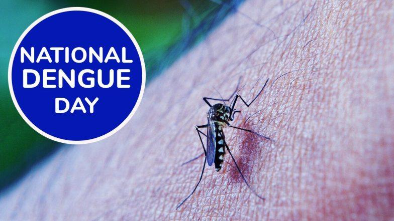 National Dengue Day 2020: डेंगू के इलाज में थोड़ी सी लापरवाही हो सकती है जानलेवा, जानें इस बुखार के कारण, लक्षण और बचाव के आसान तरीके