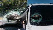Flying Turtles: क्या कछुए उड़ सकते हैं? कार के शीशे इस जीव के टकराने का हैरान करने वाला वीडियो हुआ वायरल, देखकर आपको भी नहीं होगा विश्वास