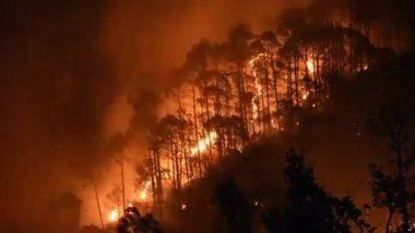 Uttarakhand Forest Fire: उत्तराखंड के 'जंगल में भीषण आग की फर्जी खबर फैलाने में विदेशी शामिल'