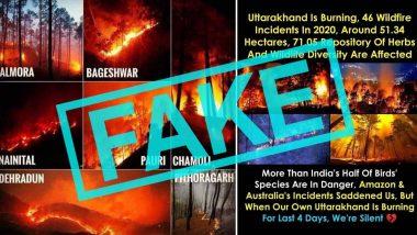 Forest Fire in Uttarakhand: उत्तराखंड के जंगलों में लगी आग की Fake Photos सोशल मीडिया पर वायरल, अधिकारियों ने पुरानी तस्वीरों को शेयर न करने की अपील की (Check Tweets)