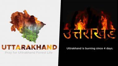 Uttarakhand Forest Fires: देवभूमि उत्तराखंड के जंगलों में 4 दिनों से लगी है आग, ट्विटर पर #SaveTheHimalyas कर रहा है ट्रेंड, प्रार्थनाओं का दौर जारी