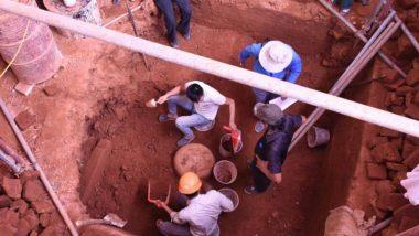 एक मंदिर की खुदाई के दौरान वियतनाम में मिला 9वीं शताब्दी का शिवलिंग, विदेश मंत्री एस जयशंकर ने भारतीय पुरातत्व सर्वेक्षण की तारीफ की