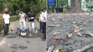 Locust Attack: उत्तर प्रदेश के आगरा में टिड्डी दल का आक्रमण, टिड्डियों को भगाने के लिए ड्रोन से किया जा रहा है केमिकल का छिड़काव