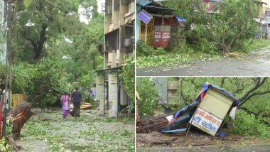 Cyclone Nisarga: महाराष्ट्र में चक्रवाती तूफान निसर्ग ने ली एक की जान, कई बड़े पेड़ जड़ समेत उखड़ गए