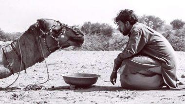 बाबिल ने पिता इरफान खान की फोटो की शेयर, बारिश को लेकर कही ये बात