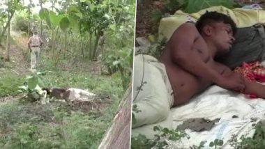 ओडिशा: गांव और क्वॉरंटीन सेंटर में नहीं मिली जगह तो मजदूर को 2 दिन बिताने पड़े जंगल में