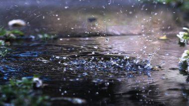 Uttar Pradesh Monsoon Update 2020: उत्तर प्रदेश के इन क्षेत्रों में बारिश का अलर्ट, मौसम विभाग ने गरज के साथ हल्की से लेकर भारी बरसात की दी चेतावनी