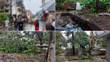 Cyclone Nisarga: चक्रवाती तूफान निसर्ग का असर, तेज हवाओं के चलते रायगढ़ में गिर कई पेड़; देखें तस्वीरें