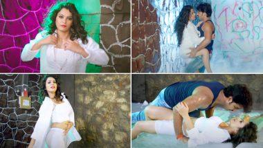 Bhojpuri Hot Song: पवन सिंह और निधि झा का गाना 'गर्मी बा देहिया' को देख लोगों के छूटे पसीने, वीडियो हुआ वायरल