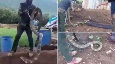 तमिलनाडु: 15 फीट लंबे किंग कोबरा को देख नरसीपुरम गांव में मचा हड़कंप, वन विभाग के अधिकारियों ने रेस्क्यू कर जंगल में छोड़ा (Watch Video)