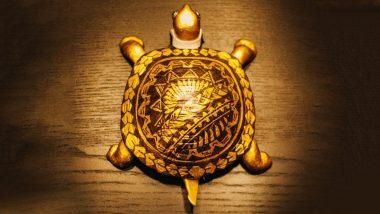 Golden Turtle Found In Nepal: नेपाल में मिला सुनहरे खाल वाला कछुआ, दर्शन करने आ रहे हैं लोग