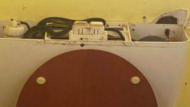 Snakes Found in Toilet Tank: क्वींसलैंड में एक टॉयलेट के टैंक में छिपकर बैठे थे 4 सांप, जिन्हें देख महिला के उड़े होश (View Pic)