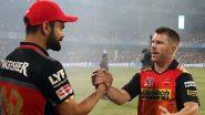 RCB vs SRH 52nd IPL Match 2020: शारजाह में David Warner ने जीता टॉस, रॉयल चैलेंजर्स बैंगलौर को मिला पहले बल्लेबाजी करने का मौका