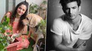 Ankita Lokhande ने सुशांत सिंह राजपूत के साथ अनदेखी फोटो की शेयर, पटना की तस्वीर भी लाई सामने