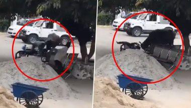 Buffalo Attacked On A Police Officer: यूपी के संभल में बाइक सवार पुलिस वाले पर गुस्साई भैंस ने किया हमला, किया उसका ऐसा हाल... (Watch Viral Video)