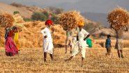 पाकिस्तान सरकार आईएमएफ की मांग पूरी करने को कृषि आय पर कर लगाने की सोच रही
