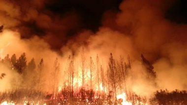 California Wildfires: कैलिफोर्निया में लगीं आग से इस साल 34 लाख एकड़ जमीन जली, वायु गुणवत्ता खराब