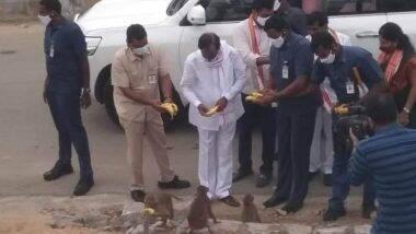 Telangana CM Feeds Bananas to Monkeys: तेलंगाना के मुख्यमंत्री केसीआर ने श्री नरसिम्हा स्वामी मंदिर के बाहर भूखे बंदरों को खिलाया केला, देखें तस्वीरें