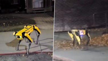 Robot Dog Viral Video: सड़क पर घूमते दिखा पीले रंग का रोबोट डॉग, वायरल वीडियो देख आपको अपनी आंखों पर नहीं होगा यकीन