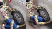Python Rescue in Mumbai: मुंबई में हाइवे पर एक कार के पहियों में फंसे 10 फीट लंबे अजगर को किया गया रेस्क्यू, वीडियो इंटरनेट पर हुआ वायरल