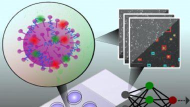 Coronavirus Testing: ऑक्सफोर्ड यूनिवर्सिटी के वैज्ञानिकों ने विकसित की रैपिड टेस्ट विधि, जो 5 मिनट से कम समय में कर सकती है COVID-19 की पहचान