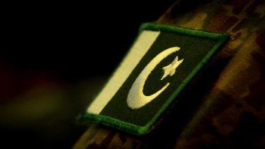 Pakistan: पाकिस्तानी आतंकवादी को भारत में हमलों की साजिश रचने के लिए 10 साल की जेल की सजा