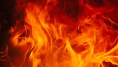 Fire in Asansol: दीपवाली की रात आसनसोल में लगी भीषण आग, कड़ी मशक्कत के पश्चात् दमकल विभाग ने पाया काबू
