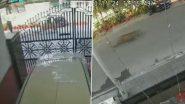 राजधानी दिल्ली से सटे गाजियाबाद में सड़क पर दिखा तेंदुआ, वीडियो हुआ वायरल