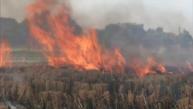 Punjab: राज्य में बढ़ते प्रदूषण के बीच किसानों ने खेत में जलाई पराली, कहा- हमारे पास कोई विकल्प नहीं है