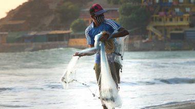 अंतदेर्शीय मछली पालन में उत्तर प्रदेश को सर्वश्रेष्ठ पुरस्कार, समुद्री क्षेत्र में ओडिशा को खिताब