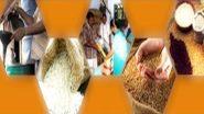 PM Garib Kalyan Yojana: मुफ्त अनाज वितरण योजना 30 नवंबर को हो रही समाप्त, आगे बढ़ाने पर विचार नहीं