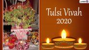 Tulsi Vivah 2020: जीवन में निरंतर हो रहे अमंगलों से मुक्ति पाने के लिए इन अष्ट मंत्रों के साथ करें तुलसी विवाह