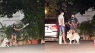 Malaika Arora Plays Cricket: बेटे अरहान के साथ क्रिकेट खेलती दिखी मलाइका अरोड़ा, देखिए तस्वीरें