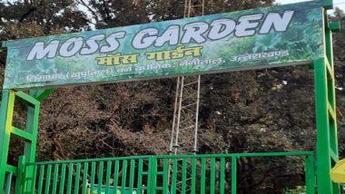 Moss Garden in Nainital: उत्तराखंड के नैनीताल में विक्सित हुआ देश का पहला मॉस गार्डन