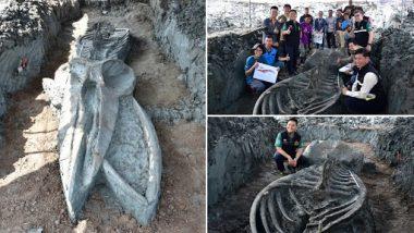 5000 Years Old Whale Skeleton Found in Thailand: वैज्ञानिकों ने थाईलैंड में 5 हजार साल पुरानी व्हेल का मिला कंकाल, देखें तस्वीरें