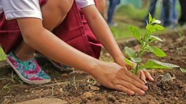 ऑक्सीजन के स्थायी समाधान के लिए दिल्ली सरकार लगाएगी 33 लाख वृक्ष
