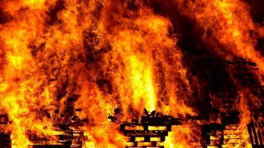 Tamil Nadu: पटाखा फैक्ट्री में लगी आग से मरने वालों की संख्या बढ़कर 19 हुई, सीएम पलानीस्वामी ने दिए जांच के आदेश
