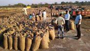 Chhattisgarh: बघेल सरकार की किसान हितेषी नीतियों का दिख रहा है असर, MSP पर उपज बेचने वालों की संख्या 94 प्रतिशत से ज्यादा