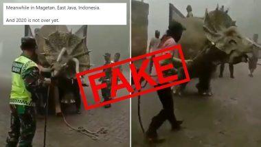 Dinosaur Caught Alive in Indonesia? इंडोनेशिया में डायनासोर को पकड़ा गया जिंदा? जानें मोजोसमी फॉरेस्ट पार्क से सामने आए इस वीडियो की सच्चाई
