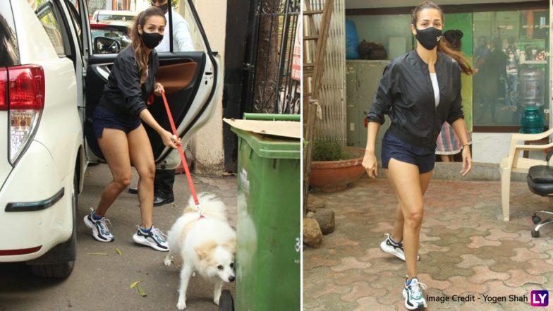 Malaika Arora Photos: अपने पेट डॉग कासपर के साथ स्पॉट हुई मलाइका अरोड़ा, देखिए हॉट फोटोज