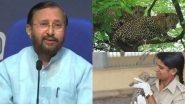 केंद्रीय मंत्री प्रकाश जावड़ेकर ने Leopards की तस्वीर शेयर कर की गुजरात के गिर राष्ट्रीय उद्यान में तैनात Rasila Wadher की तारीफ, कही ये बात