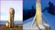 जर्मन पर्वत से गायब हुए लकड़ी के पेनिस की जगह एक दूसरे Penis-Shaped Wooden Structure ने ली, कोई नहीं जानता कैसे? (See Pics and Video)