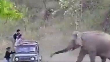 Shocking! हाथियों के क्षेत्र में इंसानों का अतिक्रमण, इस विशाल जानवर ने ऐसे दी पर्यटकों को चेतावनी (Watch Viral Video)